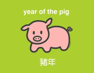 according to the chinese zodiac 2007 is a year of the pig fire which begins on february 18 2007 and ends on february 6 2008 the chinese new year does - Chinese New Year 2007